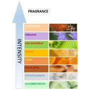 Fre Pro Hang Tag univerzális illatosító Mango