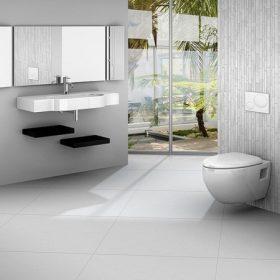 Toalett higiénia